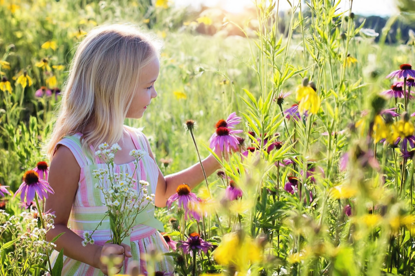 Pollen allergies: how to defend yourself against the arrival of spring