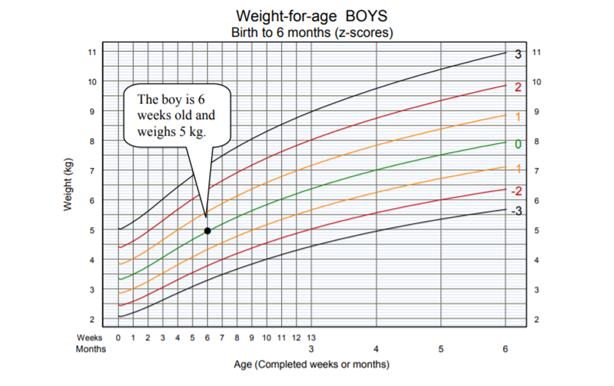 Esempio Grafico peso età OMS
