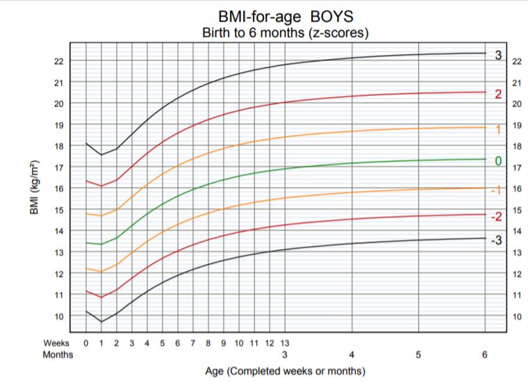 OMS - BMI per età bambino dalla nascita ai 6 mesi