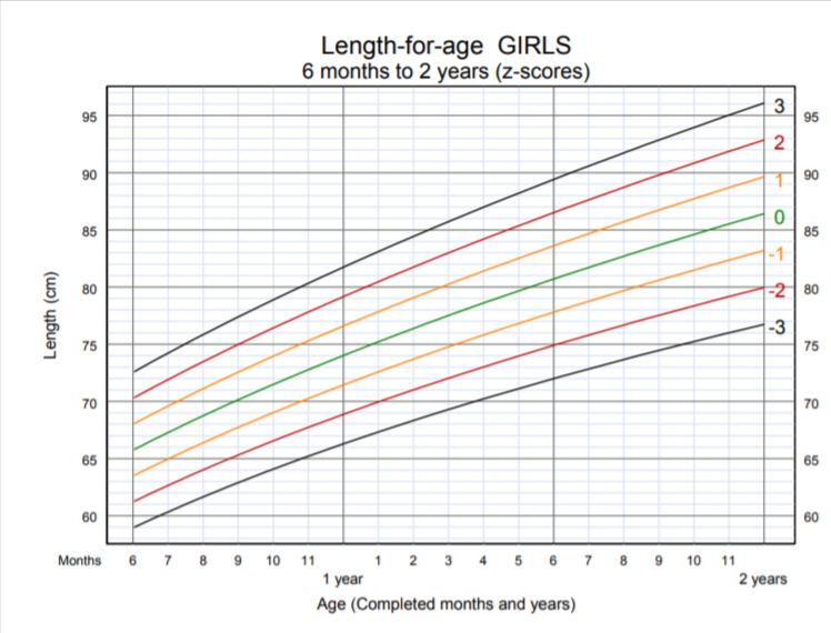OMS - lunghezza per età bambina 6 mesi 2 anni