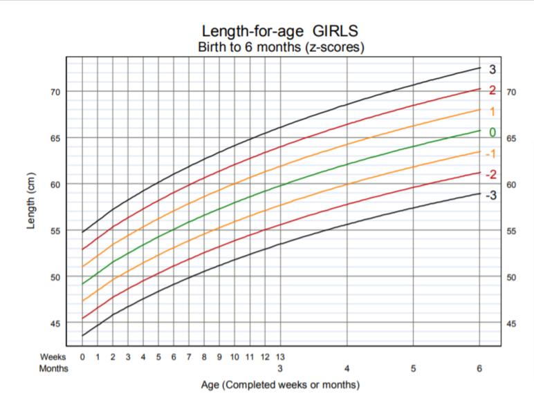 OMS - lunghezza per età bambina nascita 6 mesi