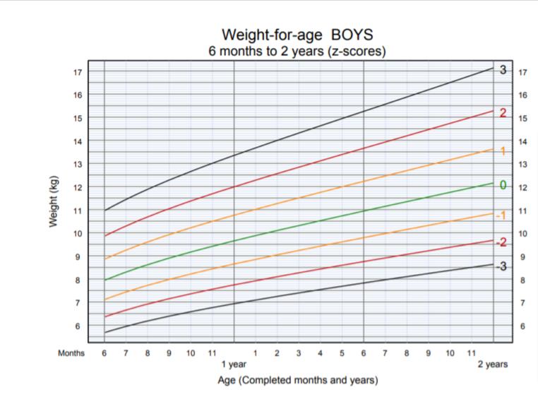 OMS - peso per altezza bambino 6 mesi 2 anni