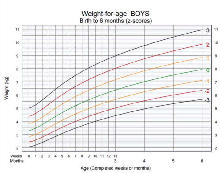 OMS - peso per età bambino dalla nascita ai 6 mesi
